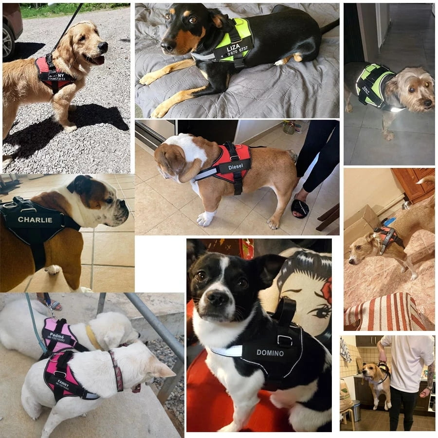 Dog-Harness-Vest-ID-Patch-Customized-Reflective-Breathable-Adjustable-Pet-Harness-For-Dog-NO-PULL-Pet.jpg_Q90.jpg_.webp (1)