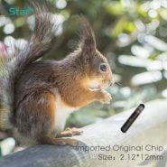 خرید چیپ ان اف سی قابل تزریق برای حیوانات 1pc 13.56MHz animal microchip syringe NFC chips 2*12mm HF smart microchips syringe with needle NTAG216 rfid injector set