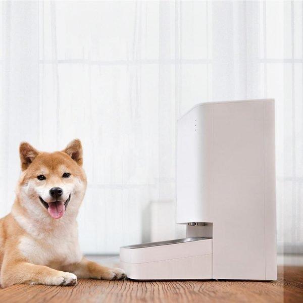 خرید New Xiaomi Smart Pet Feeder Cat Dog Remote Voice Control Automatic Feeding Regular Quantitative